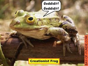 creationist-frog