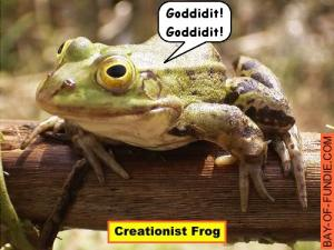 creationist-frog