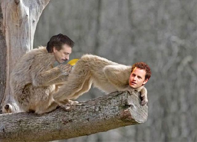 [Image: monkeybutt.jpg]